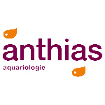Anthias Aquariologie