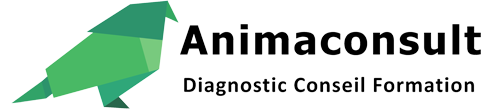 Animaconsult